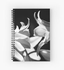 In the shadows #4 Spiral Notebook