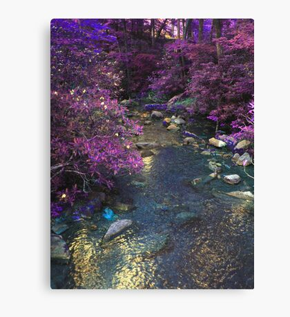 Different Aspect Brook Canvas Print
