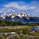 Painting the Tetons by Charlene Aycock