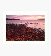Coastal Twilight Art Print