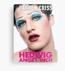 Darren Criss - Hedwig Poster Metal Print