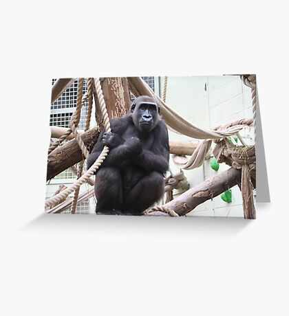 Time for a swing Greeting Card