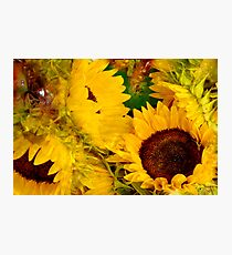 Sunshine For You Photographic Print