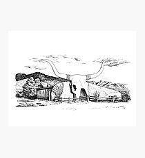 Longhorn Saloon, Arivaca, Arizona Photographic Print