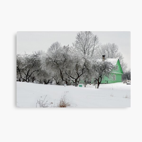 Green House in winter time Canvas Print