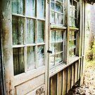 The Side Door by Jonicool
