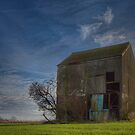The old barn on the hill. by brimo