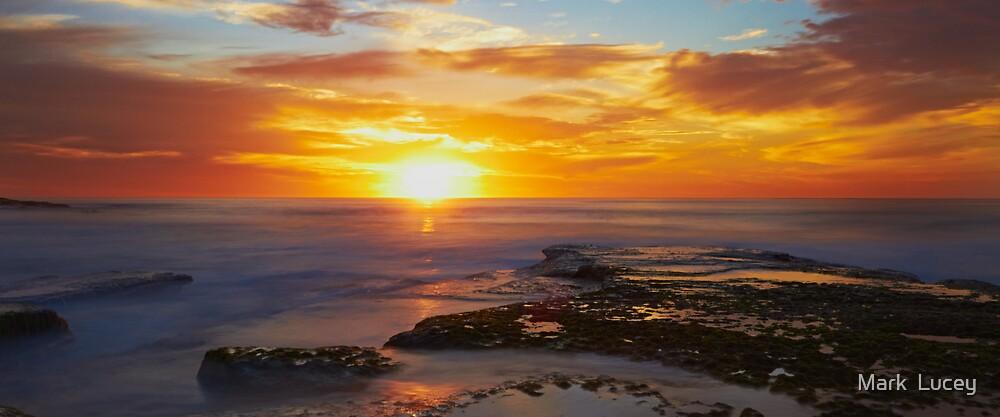 Sunrise- Maroubra Beach by Mark  Lucey
