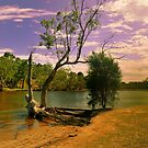 The River-Bend  by HG. QualityPhotography