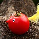 tomato bird by picketty