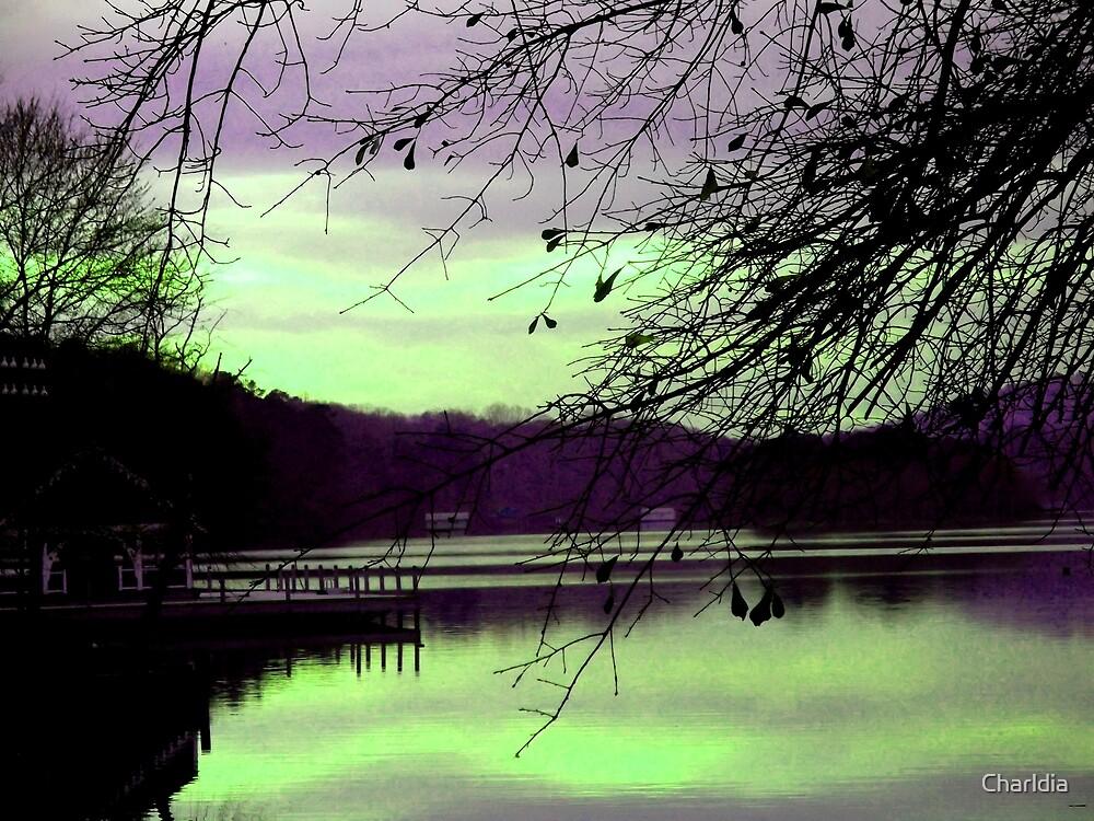 Color My World Purple by Charldia