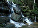 Somersby Falls by John Morton