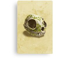 cat skull decorated with wasabi flowers Canvas Print