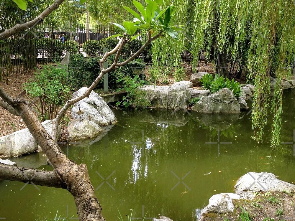 Chinese Garden by eidann