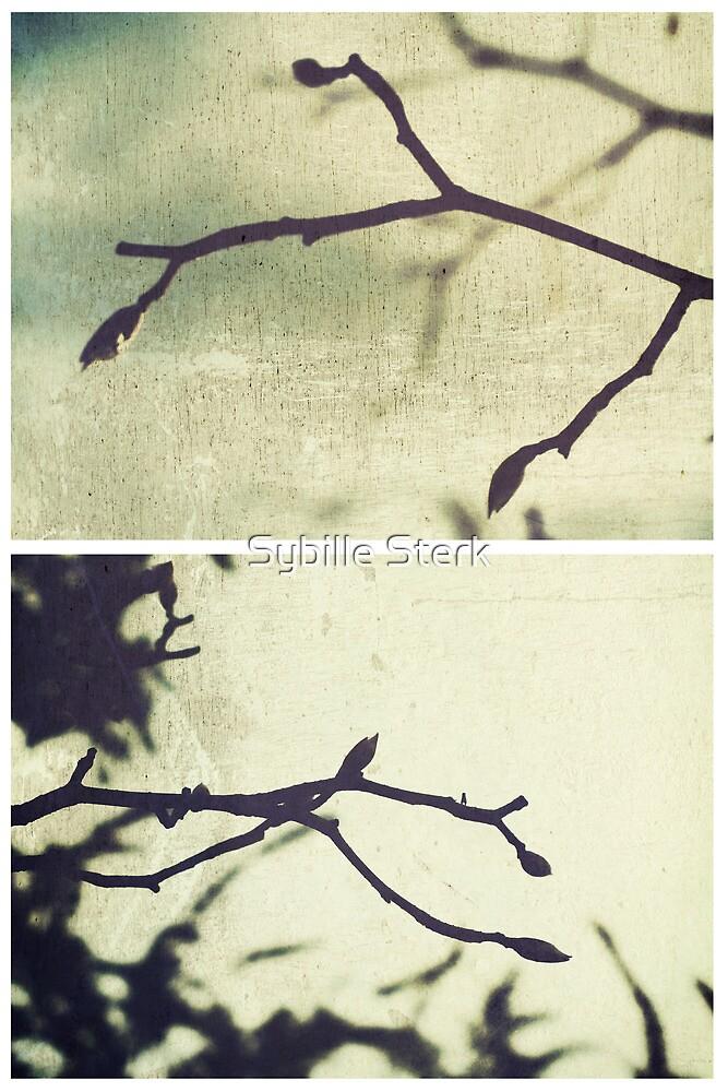 Spring I by Sybille Sterk