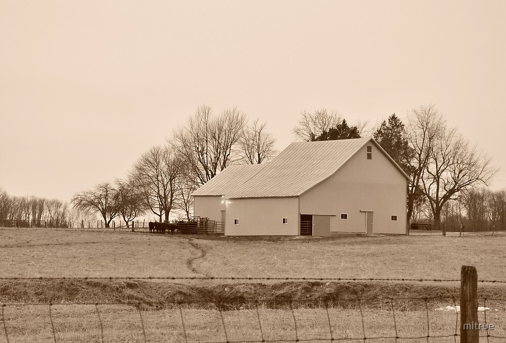 A sepia farm scene by mltrue