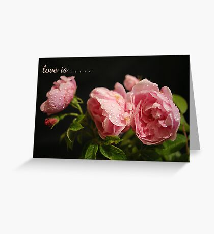 Love Is . . . . . .A Beautiful Bunch of Roses  Greeting Card