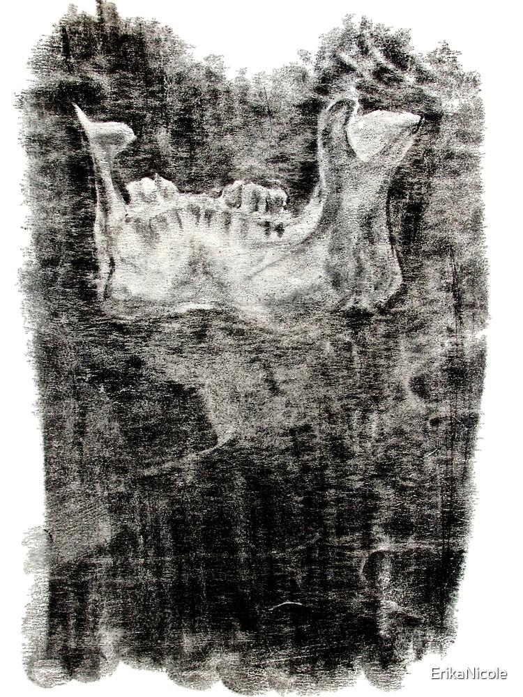 Jawbone by ErikaNicole