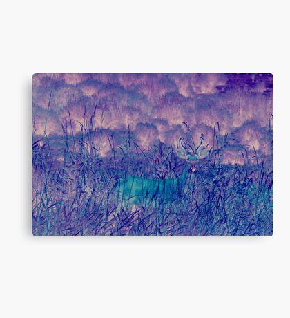 Blue Ghost Canvas Print