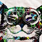Watercolor Cat Painter - by Robert R by Robert  Erod