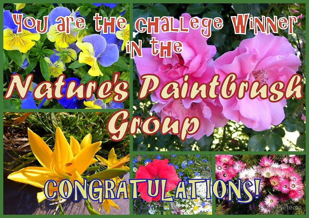 Banner : Natures Paintbrush Group by Pieta Pieterse