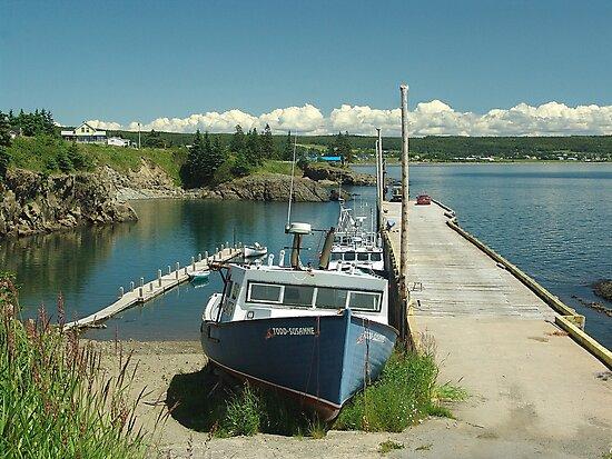Scott's Bay, Nova Scotia by George Cousins