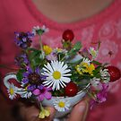 Cup of wild delights by Ruth Tinley