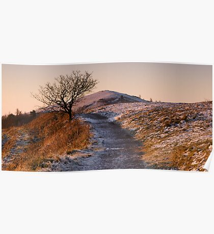Cold Dawn on Persevearance Hill Poster
