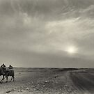 Desert Riders by Hany  Kamel