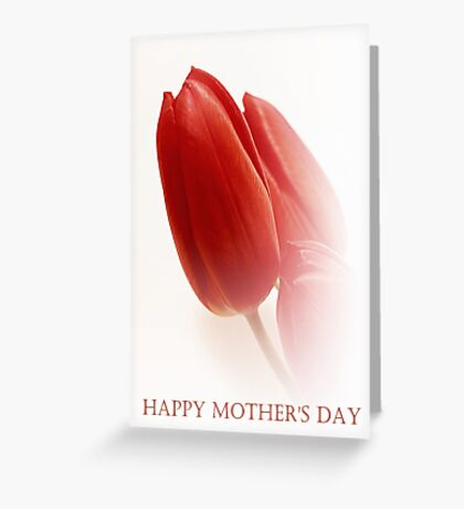 Red Tulip Buds Greeting Card