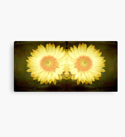 Sunshine!!! ©  Canvas Print