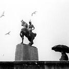 1983 - zurich: the seagulls by Ursa Vogel