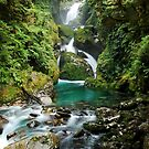 Mackay Falls, Fiordland National Park by Jeremy Harrington