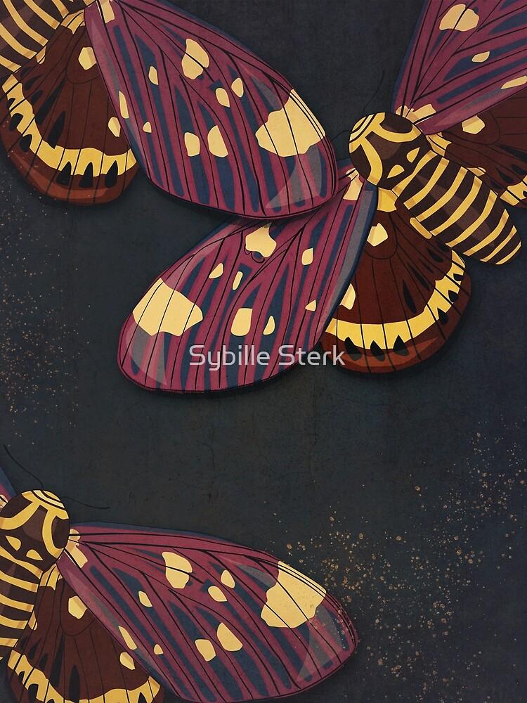 Moths by Sybille Sterk