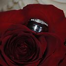 A ring among the rose by Erica Sprouse