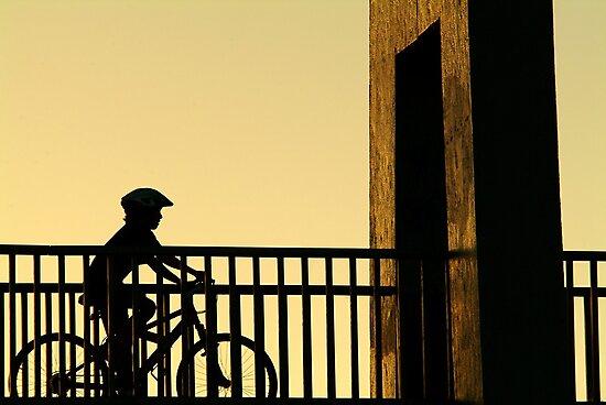 Out Riding by Joe Mortelliti