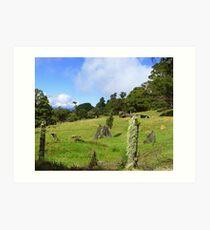 Perfect Grazing Pasture- Costa Rica Art Print