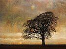 All alone am I by David Carton