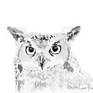 Great Horned Owl by christinahewson