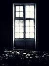 Debris ~ Pool Park Asylum by Josephine Pugh