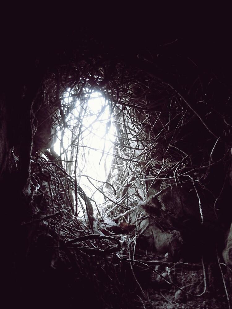 Down the Rabbit Hole by Josephine Pugh