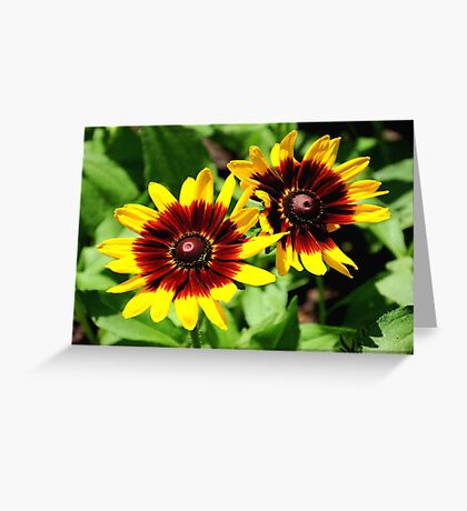 Flowers for 2!!! ©  Greeting Card