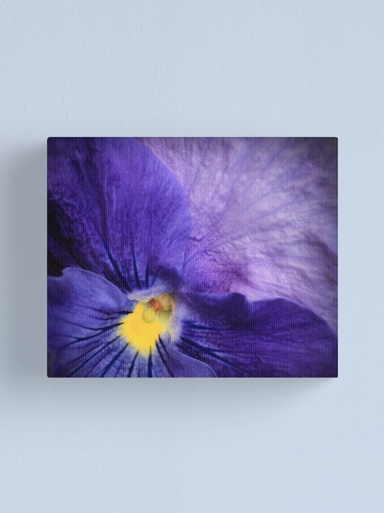 Alternate view of Pansy Canvas Print