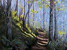 Along the Path by Karen Ilari