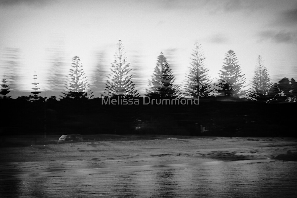 Foreshore by Melissa Drummond