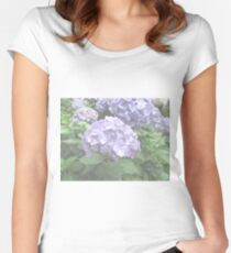 Pale Hydrangeas at Trebah Gardens, Cornwall Women's Fitted Scoop T-Shirt