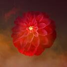 Glorious Red Dahlia The Creative Way by hurmerinta