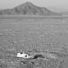 Abandoned in the middle of nowhere by NicoleBPhotos