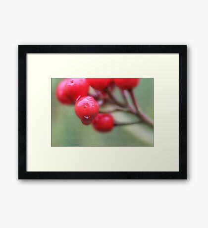 Sticky and Sweet Framed Print