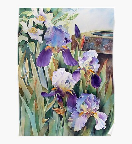 Irises and Clematis Poster